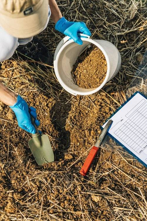photo of person doing soil testing
